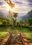 Terrassen med trappa och en sikt av dalen Ella vaggar, Sri Lanka Royaltyfria Bilder