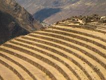 Terrassen in Peru lizenzfreie stockfotografie