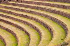 Terrassen in Pisac Royalty-vrije Stock Foto