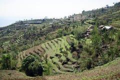 Terrassen und Dorf im Berg stockfotografie