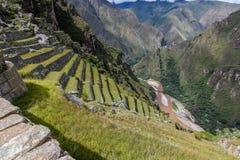 Terrassen und Fluss valey nahe Machu Picchu stockfotografie