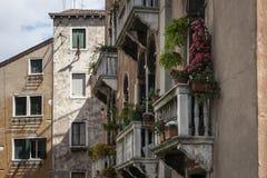 Terrassen von Venedig Stockbild