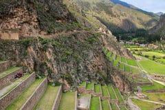 Terrasser av Pumatallis på Inca Fortress i Ollantaytambo, Pe royaltyfri fotografi