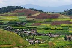 Terrasserad fält och by Royaltyfria Bilder