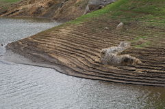 Terrasserad fält och flod Arkivbild