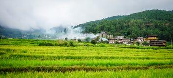 Terrasserad jordbruksmark med risfältfältet i Bhutan Royaltyfri Bild