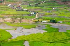 Terrasserad ricefield i vattensäsong på Mu Cang Chai, Vietnam Arkivfoton