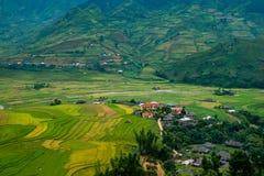 Terrasserad risfält i Mu Cang Chai, Vietnam arkivfoton