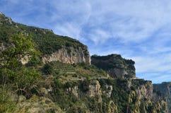 Terrasserad vingård längs den Amalfi kusten i Italien arkivfoto