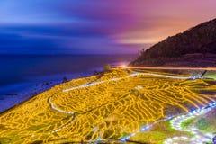 Terrasses côtières de riz de Wajima, Japon images libres de droits