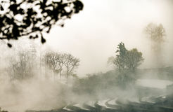 Terrasses chinoises de» †» de painting†d'encre Photo stock