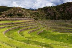 Terrasses circulaires d'Inca dans le Moray, dans la vallée sacrée, le Pérou Images libres de droits
