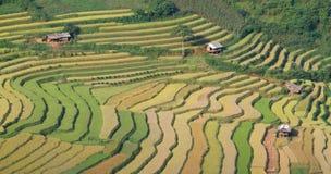 Terrasses 09 de la MU Cang Chai Images libres de droits