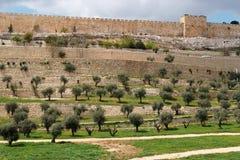 Terrasses de la vallée de Kidron et du mur de Image stock