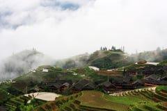 terrasses de riz Photo libre de droits