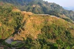 Terrasses de riz de Banaue image libre de droits