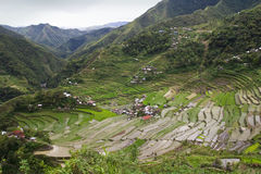 Terrasses de riz de Batad Photographie stock libre de droits