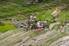 Terrasses de riz de Batad Images libres de droits