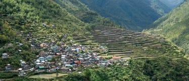 Terrasses de riz de Bayo Images libres de droits