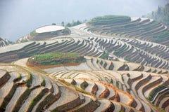 Terrasses de riz de Longji, Chine image libre de droits