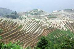 Terrasses de riz de Longji, Chine Image stock