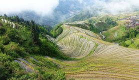 Terrasses de riz de Longsheng Image libre de droits