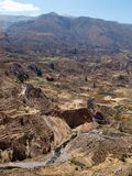 Terrasses en gorge de Colca Image libre de droits