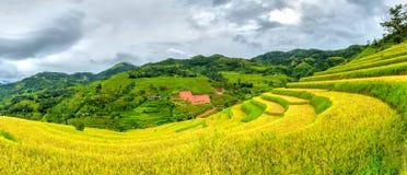 Terrasses panoramiques dans le village de Ha Giang Images libres de droits