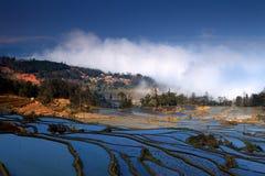 Terrassfält i västra Kina Royaltyfria Bilder