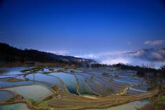 Terrassfält i västra Kina Royaltyfri Foto