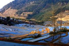 Terrassfält i västra Kina Arkivbild