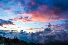 Terrassris i Sapa - Viet Nam Arkivfoton