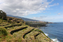 Terrasvormig land naast de oceaan Royalty-vrije Stock Foto