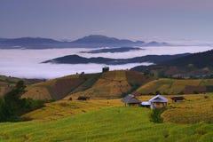 Terrasvormig padieveld in Mae Cham Thailand royalty-vrije stock afbeeldingen