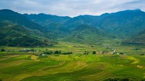 Terrasvormig padieveld in Mu Cang Chai, Vietnam stock foto