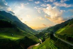 Terrasvormig padieveld in Mu Cang Chai, Vietnam royalty-vrije stock fotografie