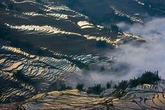 Terrasvormig padieveld (Yuanyang Hani) royalty-vrije stock afbeelding