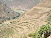 Terrasvormige gebieden in bergen Royalty-vrije Stock Afbeelding