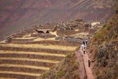 Terrasvormige gebieden Inca en ruïnes van dorp Royalty-vrije Stock Foto