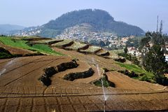 Terrasvormige gebieden met watersproeiers op landbouwbedrijf Royalty-vrije Stock Foto
