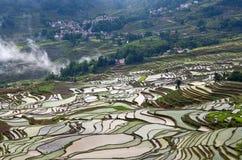 Terrasvormige padievelden in Yuanyang-provincie, Yunnan, China Royalty-vrije Stock Afbeeldingen