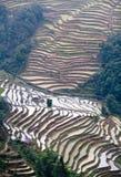 Terrasvormige padievelden in Yuanyang, Yunnan, China Stock Afbeeldingen