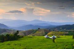 Terrasvormige Rijst Mae Chaem, Chiang Mai, Thailand royalty-vrije stock foto
