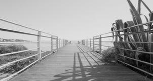 Terraza blanco y negro del aire en Albufeira imagen de archivo libre de regalías