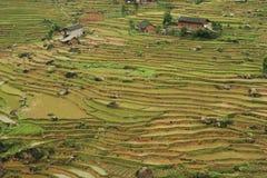 Terraza china de Fubao (16) Imagenes de archivo