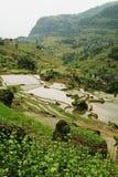 Terraza china de Fubao (2) Foto de archivo libre de regalías