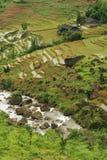 Terraza china de Fubao (7) Foto de archivo