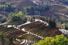 Terraza de China Yunnan Hani Imagenes de archivo