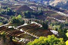 Terraza de China Yunnan Hani fotografía de archivo libre de regalías