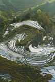 Terraza de Hani, Yunnan, China01 Imagen de archivo